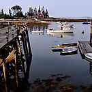 Quiet Harbor - Cape Newagen,  Maine by T.J. Martin
