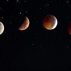 2010 Winter Solstice Lunar Eclipse by Ali Zaidi