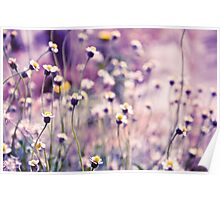 SOLD; Purple field: Explore; Got 7 Featured Work, One Explore Featured Poster