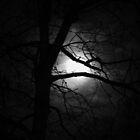 Georgia Moonshine by Chelei