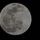 Full Moon Winter Soltice 2010  by loralea