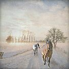Sunrises & Quarter Horses - Winter Edition by Laura Palazzolo