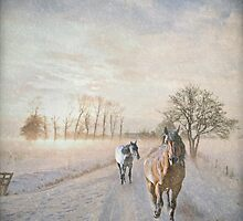 Sunrises & Quarter Horses - Winter Edition by Laura Palazzolo