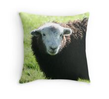 Herdwick Lamb Throw Pillow