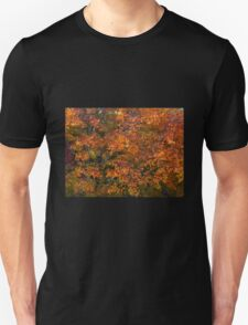 Autumn tones of a Japanese Maple #1 T-Shirt
