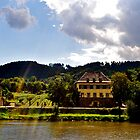 Along the Moselle by Megan Alexandra Hoffman