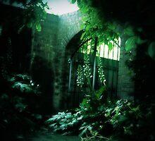 Secret Garden - Gateway (1) by Michelle  Evans-Catherall
