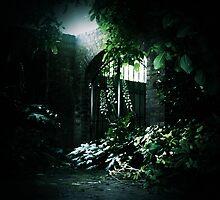 Secret Garden - Gateway (2) by Michelle  Evans-Catherall