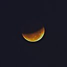 Sydney's Partial Lunar Eclipse by Mark  Lucey