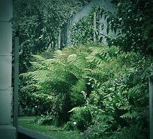 Secret Garden (4) by Michelle  Evans-Catherall
