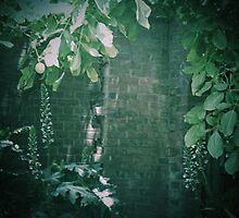 Secret Garden (6) by Michelle  Evans-Catherall
