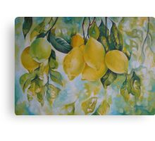 Golden fruit Canvas Print