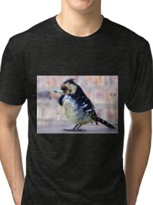 Crested Barbet / Kuifkophoutkapper Tri-blend T-Shirt