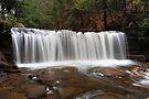Spring Begins At Oneida Waterfall by Gene Walls