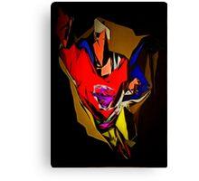 superhero x1 Canvas Print