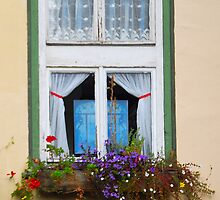 Old Windows by vbk70