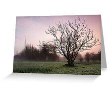 Salisbury water meadows Greeting Card