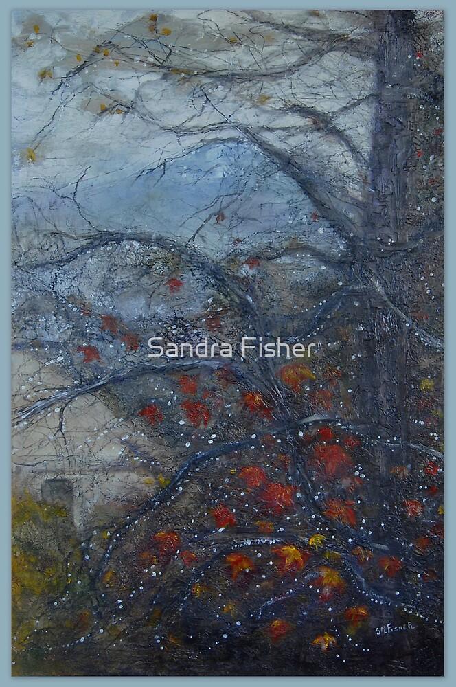 Autumn rain jewels by S Fisher