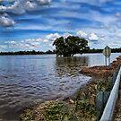 Farm flood, Murrumbidgee by bazcelt
