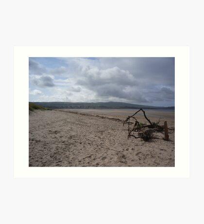 Driftwood - Ayrshire, Scotland Art Print