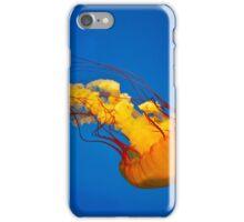 Life Aquatic iPhone Case/Skin