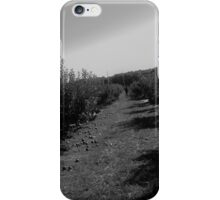 In The Orchard iPhone Case/Skin