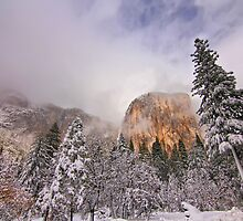 El Capitan by Leasha Hooker