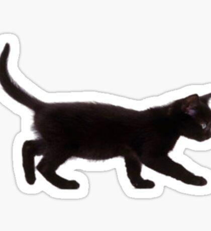 Cat running Sticker