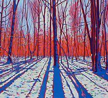 Bright Snowy Day - Rochester New York by Gary McNulty