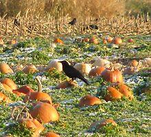 Murder in the pumpkins by wildwoosi