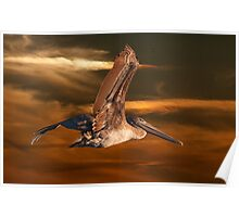 Brown Pelican Fly By Poster