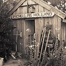 Old garden shed by patjila