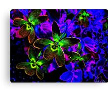 Photoshopped Flower 6 Canvas Print