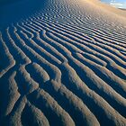 Guadalupe Dunes by Inge Johnsson