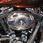 96 Cubic Inches by PhotogeniquE IPA