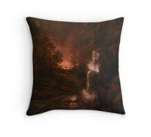 Evening Landscape Throw Pillow