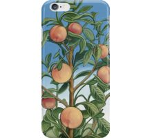Peaches and Green iPhone Case/Skin