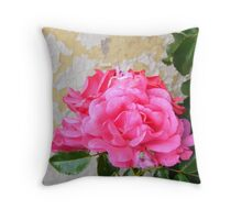 rose against flaky paint Throw Pillow