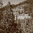 Mountainside near Lake Tahoe by Frank Romeo