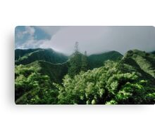 Our Green Planet Canvas Print