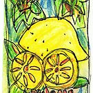 Lemons by Kim  Magee