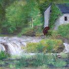 Cenarth Falls by WILT