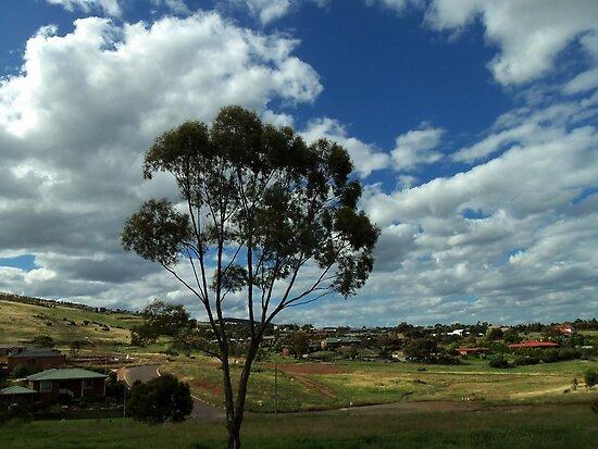 my suburb by fazza