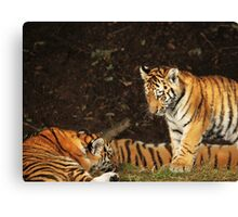 Come and play Canvas Print