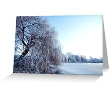 Weeping willow in morning frost Greeting Card