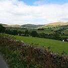 Country View on the Road from Tebay to Kendal by Marilyn Harris