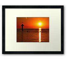 The sunrise swan Framed Print