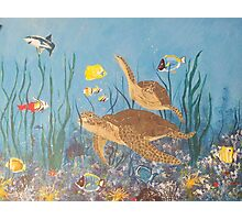 Life at the Coral Reef Photographic Print