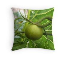Tomato Throw Pillow