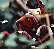 Buddhist monks in India by Niall Stanton